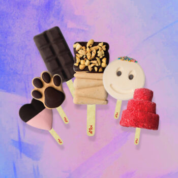 Pack of 6 Ice cream Sticks